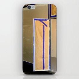 Display Windows For Dummies iPhone Skin