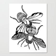 Houseflies Canvas Print