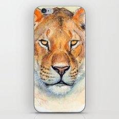 Lioness 845 iPhone & iPod Skin