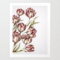 Summer Flowers VI Art Print