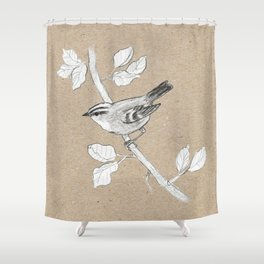 Goldcrest graphite drawing Shower Curtain