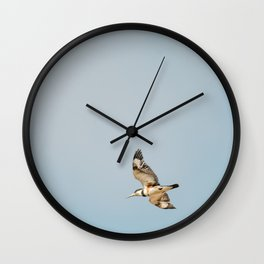Bird - Belted Kingfisher Wall Clock