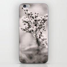 shoot iPhone & iPod Skin