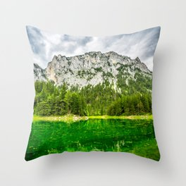 Shaded In Throw Pillow