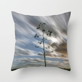 """Moonlit Skyscape"" by Murray Bolesta Throw Pillow"