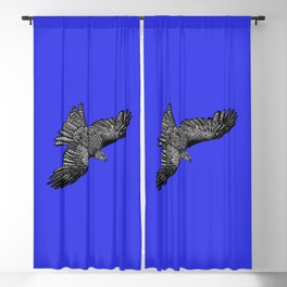 Black kite - bird of prey - ink illustration - navy blue Blackout Curtain