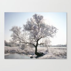 My Special Tree Canvas Print