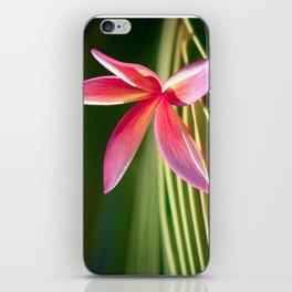 A Pure World iPhone Skin