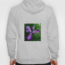Wild Purple Iris Hoody