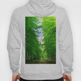 Forest outside Copenhagen Hoody