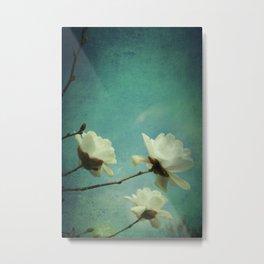 White Magnolias Metal Print