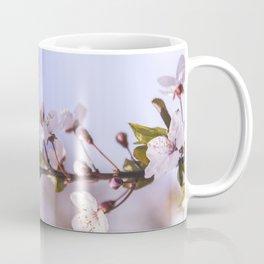 Branch of White Spring Flowers Coffee Mug