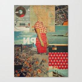 NP1969 Canvas Print