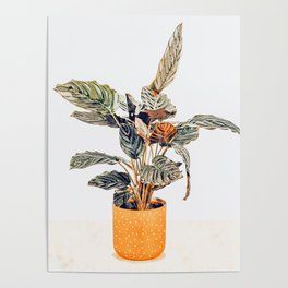 Botany || #illustration #painting #nature Poster