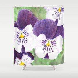 Pansies flowers Shower Curtain
