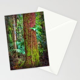 New and old rainforest growth Stationery Cards