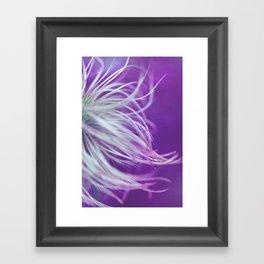 violett Framed Art Print