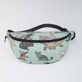 Cats shaped Marble - Mint Green Fanny Pack