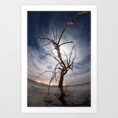 Moonlight Tree Art Print