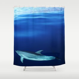 Dolphin and blues Shower Curtain