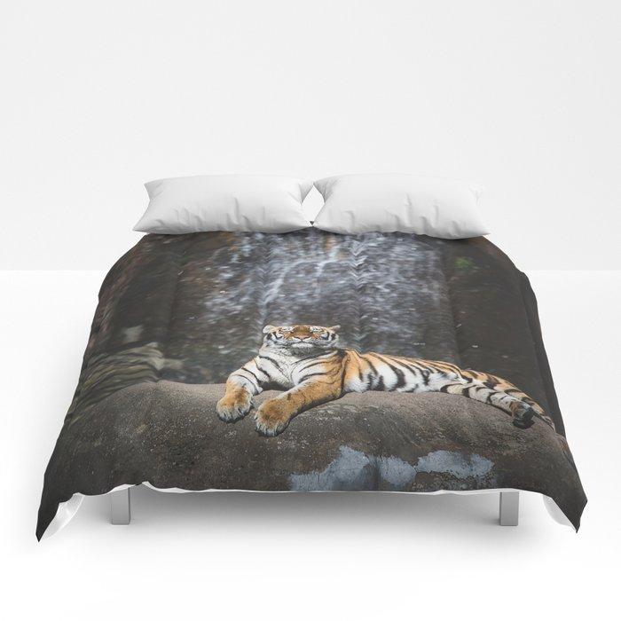 Big Cat 2 Comforters