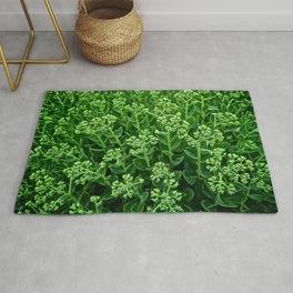 Beautiful Green Pattern - The Peace Collection Rug