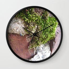Moss the Sewer  Wall Clock