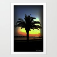 palm Art Prints featuring Palm by Chris' Landscape Images & Designs