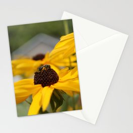 Bee on a Sunflower Stationery Cards
