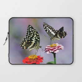 Swallow tail  or Christmas Butterfly Laptop Sleeve