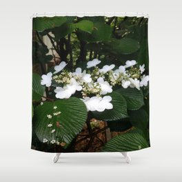 Natural Delight Shower Curtain