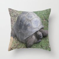 tortoise Throw Pillows featuring tortoise by shannon's art space
