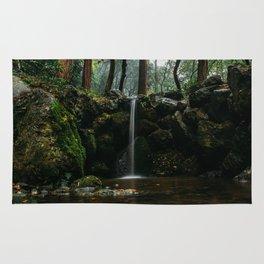 Waterfall in Daigo-ji Rug