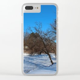 Frozen in Time Clear iPhone Case