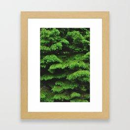 Greenery I Framed Art Print