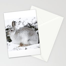 The white beast Stationery Cards