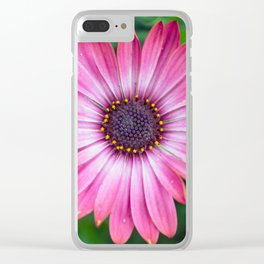 Flower Portrait - Pink Sunshine Clear iPhone Case