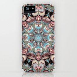 Structured Kaleid by Leslie Harlow iPhone Case