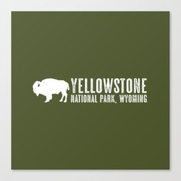 Bison: Yellowstone National Park Canvas Print