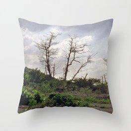 Vue Pointe II Throw Pillow