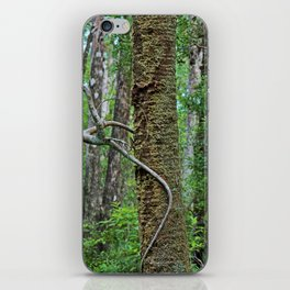Tree Climber iPhone Skin