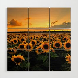 Sunflower field Wood Wall Art