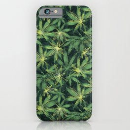 Leaf Your Troubles Behind  iPhone Case