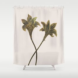 Indian Lily Daffodil Shower Curtain