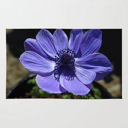 Grecian Windflower Rug
