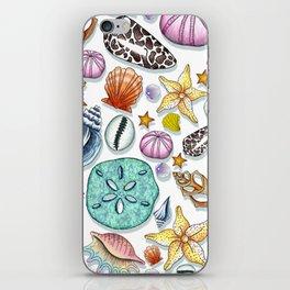 Illustrated Seashell Pattern iPhone Skin