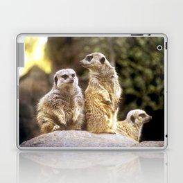 Act Natural Meerkats Laptop & iPad Skin