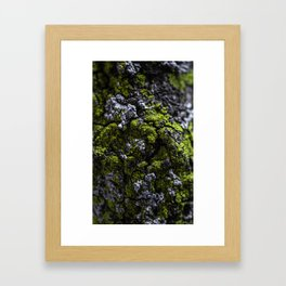 Barnacle Woodlands Framed Art Print