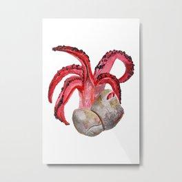 C. archeri Metal Print