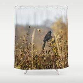Blackbird in Autumn Light Shower Curtain